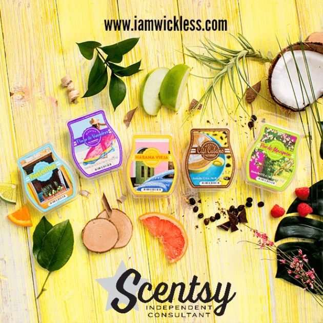 cuba-scentsy-bar-collection.jpg