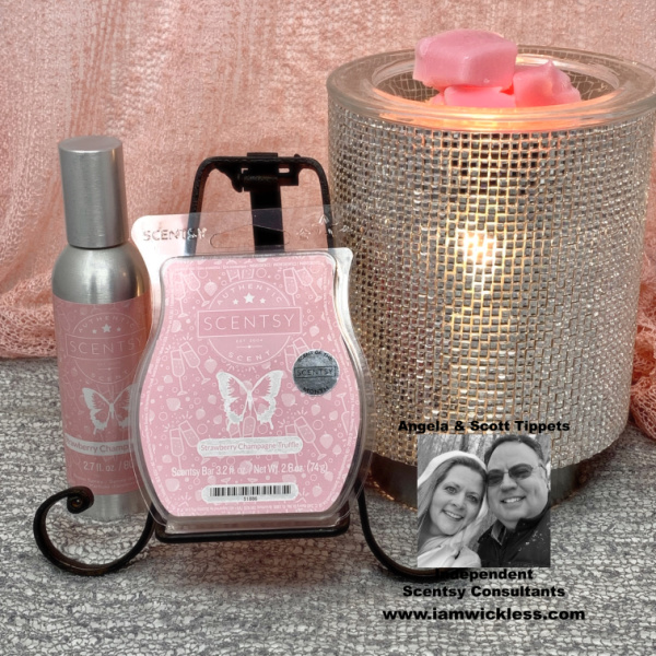 january-scentsy-warmer.jpg